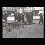 People feeding pigeons, Vienna