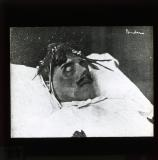 Karl Liebknecht: lying in state