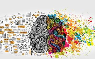 Brain and information
