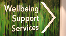 Wellbeing Support Services
